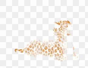 Giraffe - Giraffe Leopard Felidae Cheetah Lion PNG