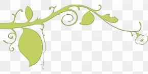 Plant Stem Branch - Leaf Green Clip Art Plant Branch PNG
