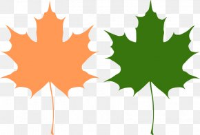 Maple Leaf Vector - Canada Reviving Canadian Democracy Maple Leaf PNG