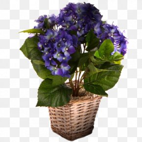 Brush Pot - Blue Hydrangea Sweet Violet Flower PNG