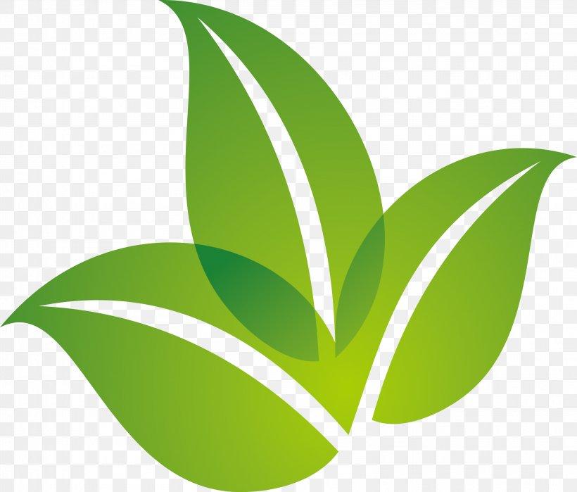 Leaf Logo, PNG, 3233x2758px, Leaf, Brand, Designer, Grass, Green Download Free