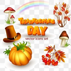 Thanksgiving Cartoon Vector Elements - Thanksgiving Day Icon PNG