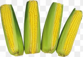 Corn Image - Corn On The Cob Commodity Sweet Corn Maize PNG
