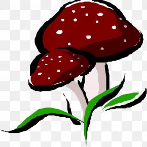 Hand-painted Cartoon Mushrooms - Mushroom Fungus Shiitake PNG