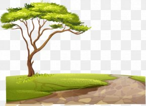 Country Road - Fauna Of Africa Lion Clip Art PNG