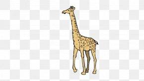 Giraffe - Giraffe Fauna Wildlife Pattern PNG