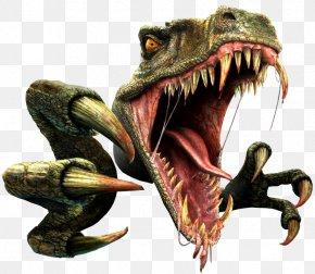 Dinosaur - Dinosaur Museum Triceratops Spinosaurus PNG