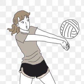 Ball - Volleyball Sports Net Sport PNG