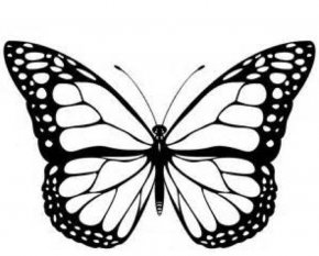 Cartoon Monarch Butterfly - Monarch Butterfly Black And White Clip Art PNG