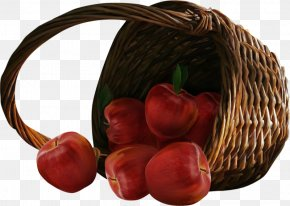 Basket Of Fruit - Fruit Apple Basket Clip Art PNG