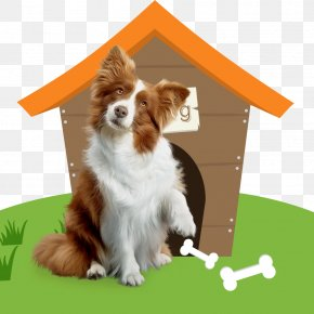 Pet House - Dog Breed Cat Pet Companion Dog PNG