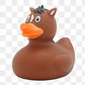 Rubber Duck - Rubber Duck Natural Rubber Toy Bathtub PNG
