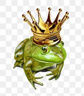 Frog - The Frog Prince Royalty-free Illustration PNG