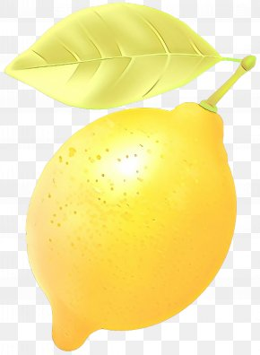 Meyer Lemon Pear - Yellow Fruit Lemon Plant Leaf PNG