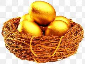 Nest Of Golden Eggs - Information Organization Investment Google Chrome Motivational Leadership PNG
