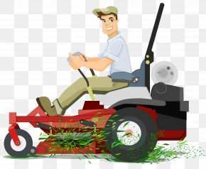 Lawn - Lawn Mowers Landscape Maintenance Weed Control Aeration PNG