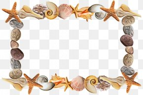 Shell Picture Frame - Watercolor Background Frame PNG