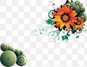 FLOWER PATTERN - Flower Floral Design PNG