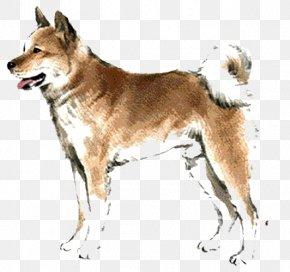 Tongue Dog - Saarloos Wolfdog Czechoslovakian Wolfdog Kunming Wolfdog Chinese Zodiac Rat PNG
