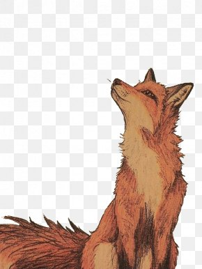 Looking Fox - Drawing Art Fox Watercolor Painting Illustration PNG