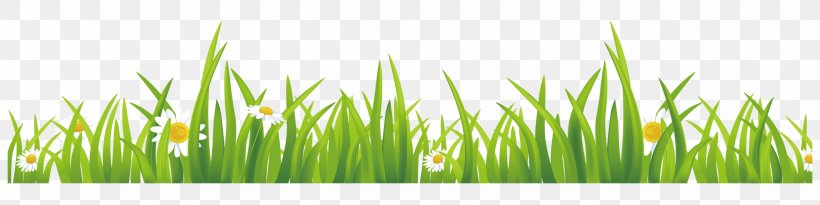 green grass gis euclidean vector png 2362x591px green commodity free software grass grass family download free green grass gis euclidean vector png