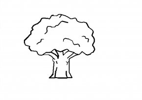 Black And White Tree Drawing - Tree Black And White Drawing Clip Art PNG