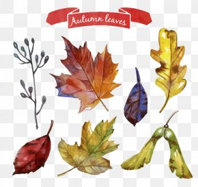 Autumn Leaves Wreath Vector Material PNG