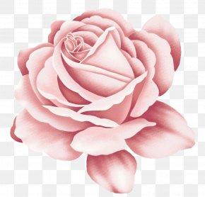 Rose - Rose Tattoo Pink PNG