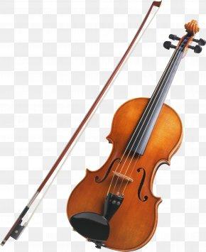 Violin - String Instrument Musical Instrument Violin Viola PNG