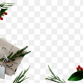 Christmas Day Christmas Card Holiday Stock Photography New Year PNG