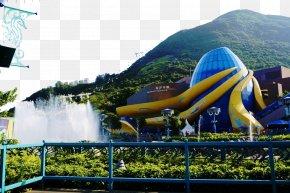 Ocean Park Hong Kong - Ocean Park Hong Kong Amusement Park U6d77u6d0bu5217u8eca Giant Panda Tourist Attraction PNG