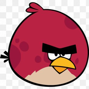 Big Bird Cliparts - Angry Birds Space Angry Birds Star Wars II Clip Art PNG