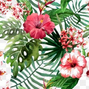 Hand Painted,flower,poster - Flower Drawing Tropics Stock Photography PNG
