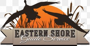 Duck - Duck Waterfowl Hunting Goose Logo PNG