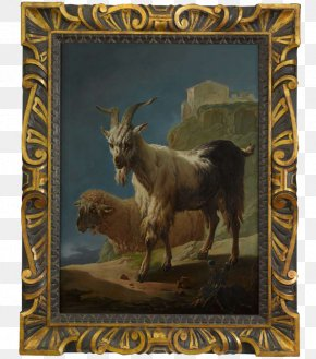 Goat - Goat Sheep Cattle Animal Horn PNG