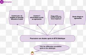 Bts Memes - Dietitian Advanced Vocational Diploma Higher Education Dietetica Baccalauréat PNG