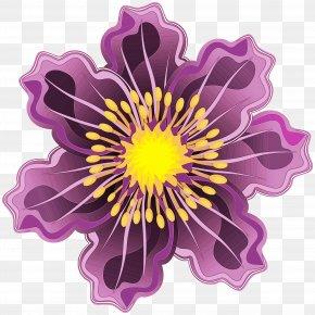 Passion Flower Family Flowering Plant - Purple Flower Violet Petal Plant PNG