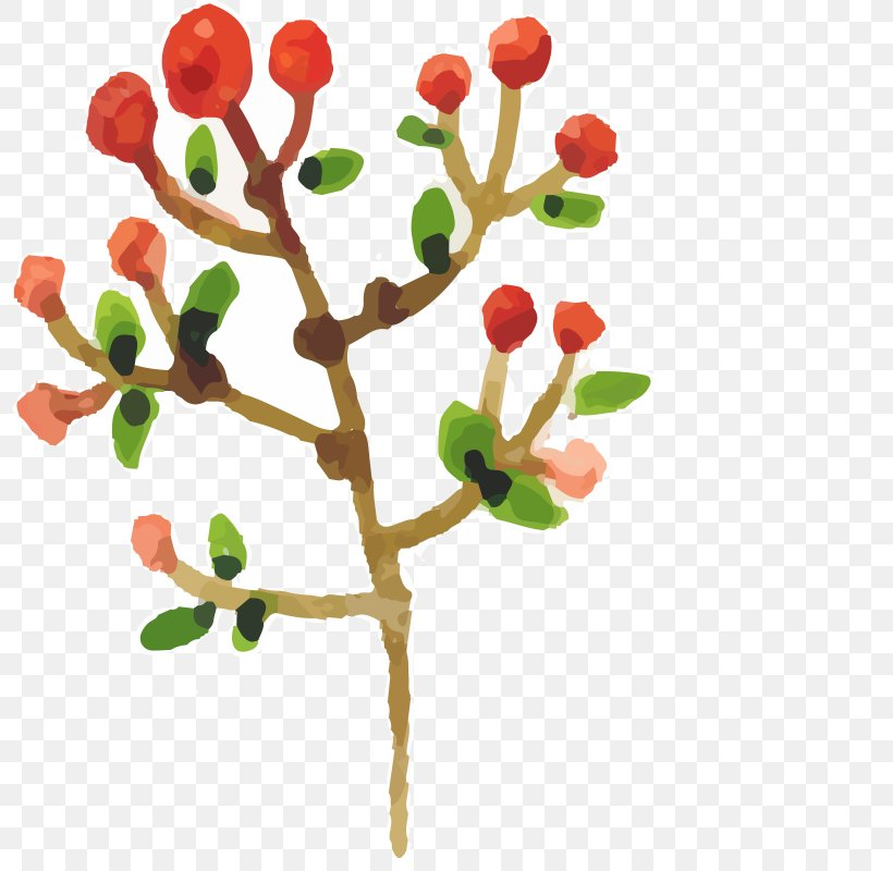 Watercolor Painting Drawing, PNG, 800x800px, Watercolor Painting, Auglis, Branch, Christmas, Drawing Download Free