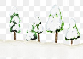 Winter Trees - Snow Winter Pinaceae Illustration PNG