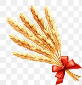 Wheat - Wheat Ear Cereal Clip Art PNG