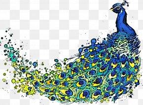 Peafowl - Peafowl PNG