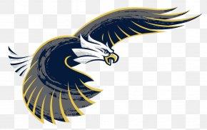 Business Exquisite Album Design Vector Material - Bald Eagle Logo Clip Art PNG