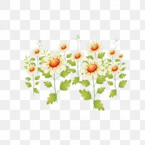 Sunflower - Floral Design Flower Pattern PNG