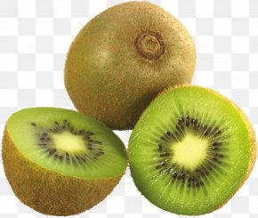 Kiwi PNG Image, Free Fruit Kiwi PNG Pictures Download - Papua New Guinea National Rugby League Team Southern Brown Kiwi New Zealand Women's National Rugby League Team 2017 Women's Rugby League World Cup PNG