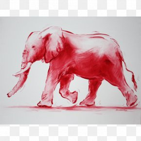 India - Indian Elephant African Elephant Drawing Watercolor Painting Curtiss C-46 Commando PNG