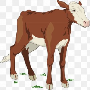 Cow - Holstein Friesian Cattle Jersey Cattle Ayrshire Cattle Brown Swiss Cattle Clip Art PNG
