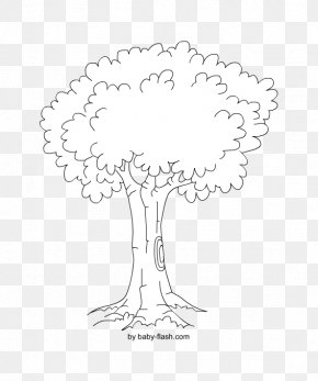 Mandala - Line Art Woody Plant Black And White Drawing Tree PNG