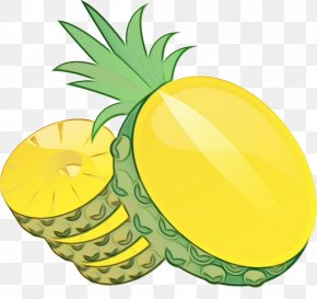 Palm Tree Lemon - Cartoon Palm Tree PNG