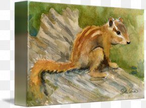 Watercolor Painting Animal - Chipmunk Watercolor Painting Art Mixed Media PNG