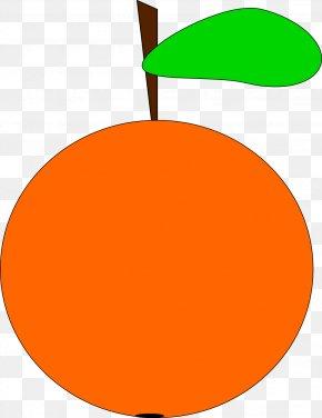 Orange Image - Orange Tangerine Clip Art PNG